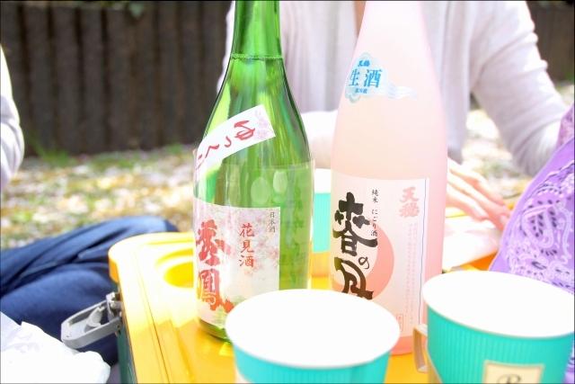 2019年の花見_04.JPG