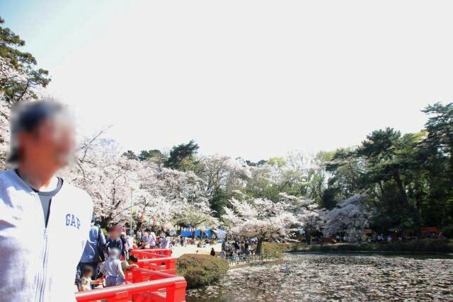 2019年の花見_09.JPG