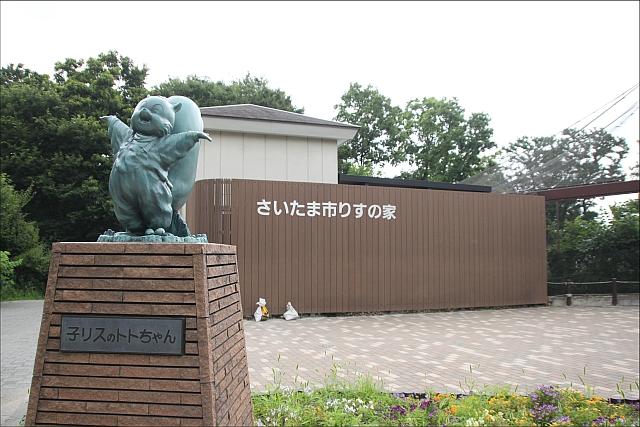 りすの家_01.JPG